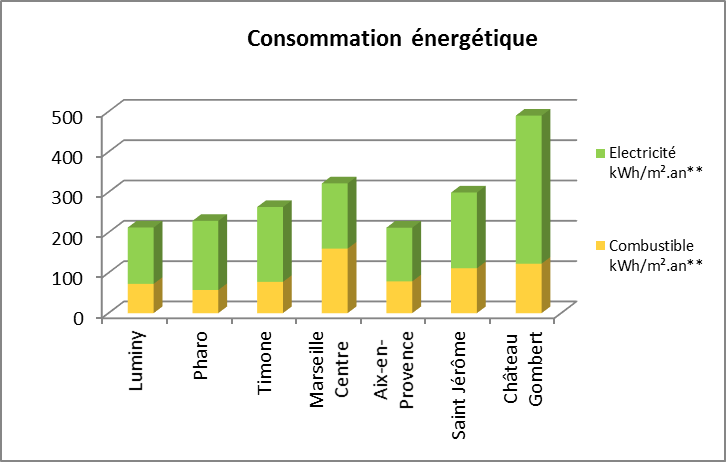 Schéma bilan des consommations énergétiques en électricité et combustibles