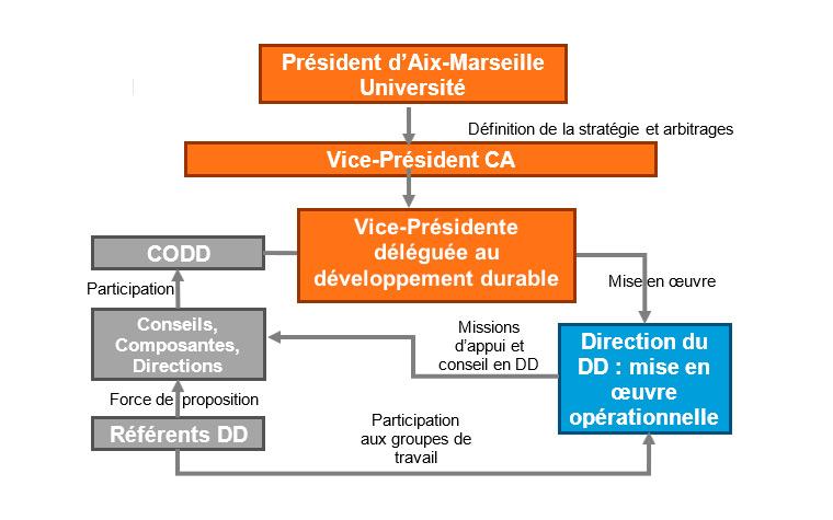 Schéma organigramme de la Direcion Développement Durable