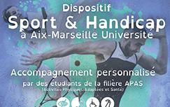 Affiche handicap portfolio miniature