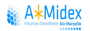logo AMIDEX