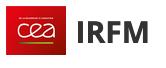CEA-IRFM